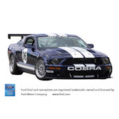 2006 Ford Mustang FR500 Peel and Stick Wall Mural