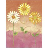 Orange Big Daisies Small Pre Pasted Wall Mural