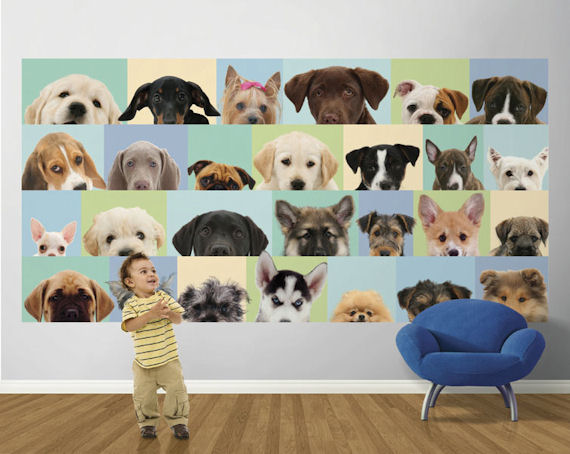 Dog Wallpaper For Walls Delectable With Puppy Dog Wall Mural Image
