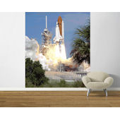 Shuttle Launch 2 Pre Pasted Mural