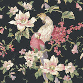 Black Tropical Birds With Magnolias Wallpaper