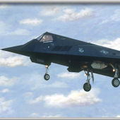 F 117 Stealth Minute Mural