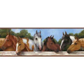 Hooray For Horses SB7540BD Wallpaper Border
