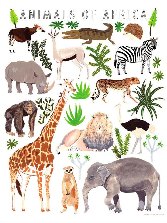 Animals Of Africa Poster Decal