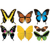 Biggies Butterflies Wall Stickies Decals