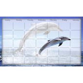 Biggies Dolphin Leap Wipe Off Calendar
