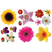 Biggies Flowers Wall Stickies Decals