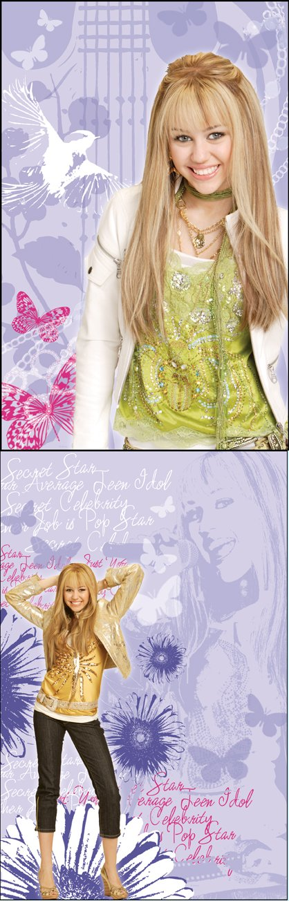 Hannah Montana 2 Piece Self Stick Wall Art - Wall Sticker Outlet