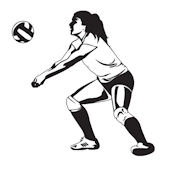 Volleyball Bump Midnight Sudden Shadow Wall Decal