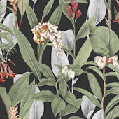 Graham and Brown Botanical Black Wallpaper