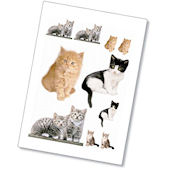 Komar Kitty Peel and Stick Wall Sticker