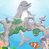 Happy Dolphin Create A Wall Mural