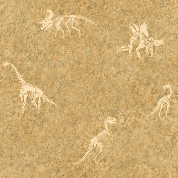 Candice Olson Tan Dinosaur Fossil Wallpaper