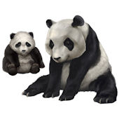 Giant Panda Mommy and Baby Peel and Stick Mural