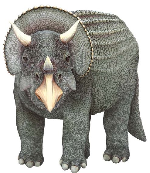 Triceratops Large Dinosaur Peel Stick Wall Mural - Kids Wall Decor Store