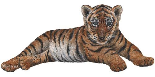 Tiger Cub Peel and Stick Wall Sticker - Wall Sticker Outlet