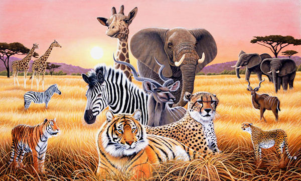 Safari II Wall Mural C871 - Wall Sticker Outlet