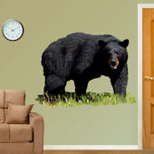 Fathead Black Bear Wall Graphic