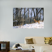 Fathead Deer In The Woods Wall Mural