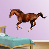 Fathead Horse Wall Graphic