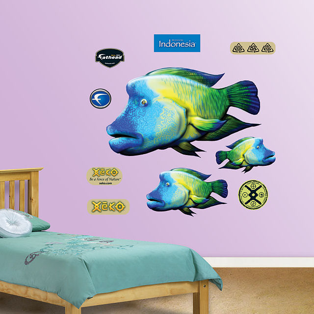 Fathead Humphead Fish Wall Graphic - Wall Sticker Outlet