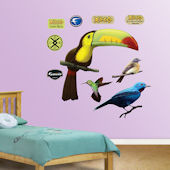 Fathead Toucan Peel and Stick Wall Graphics
