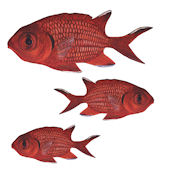 Soldier Fish Peel and Stick Wall Decal