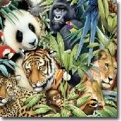 Jungle Safari Wall Decor