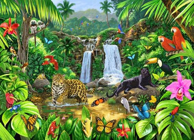 Rainforest Harmony Peel and Stick Mural - Wall Sticker Outlet