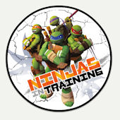 Teenage Mutant Ninja Turtle In Training Wall Decal