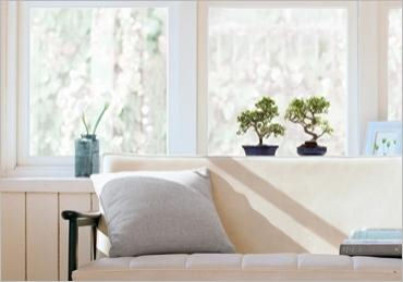 Nouvelles Images Bonzai Window Cling Stickers - Wall Sticker Outlet