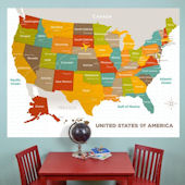 Wood Grain USA Map Mural Decal
