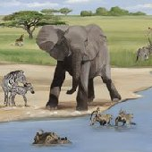 African Safari Wall Canvas Art