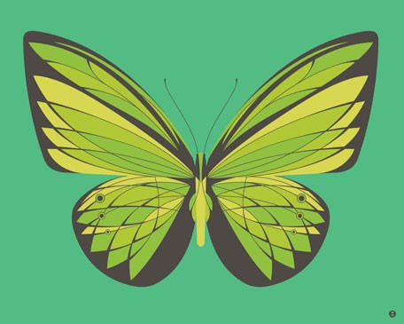 Emerald Butterfly Canvas Wall Art - Wall Sticker Outlet
