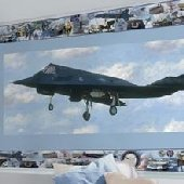 F-117 Stealth Fighter Peel and Stick Wall Mural