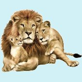 Lion Family Jungle Animals Peel and Stick Mural