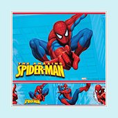 Amazing Spider-man Wall Border SALE