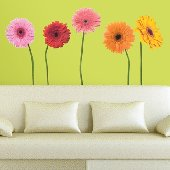 Gerber Daisies Wall Mural Stickers