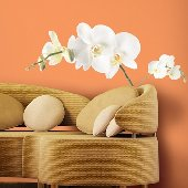 White Orchid Wall Mural Stickers