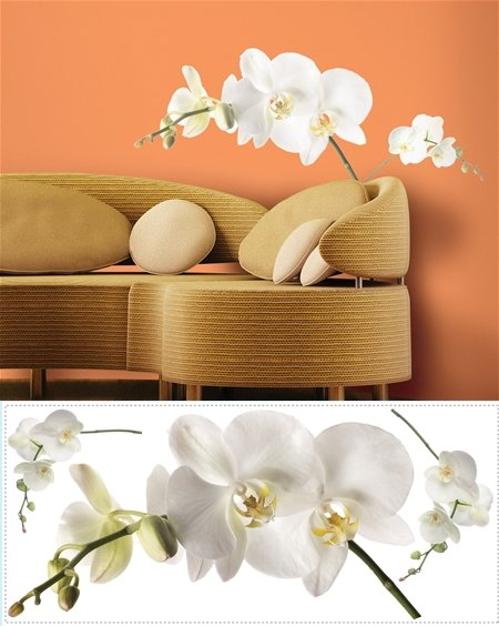 White Orchid Wall Mural Stickers - Wall Sticker Outlet
