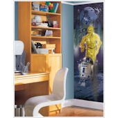 Star Wars C-3PO & R2-D2 Wall Panel