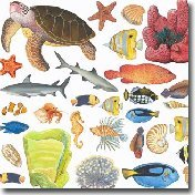 Sealife & Ocean Wall Decals