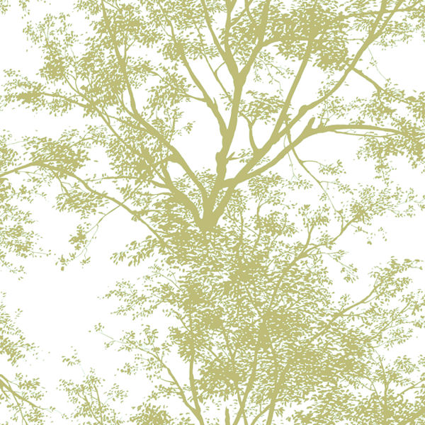 Nature Inspired Wallpaper Tree Silhouette Wallpaper