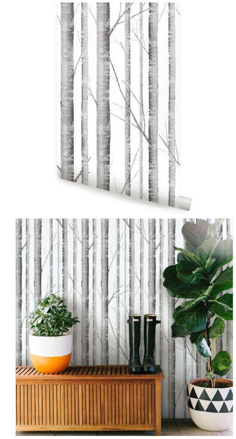 Birch tree peel and stick wallpaper - Birch tree wallpaper peel and stick ...