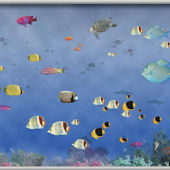 Tropical Underseas Wall Minute Mural Part 44