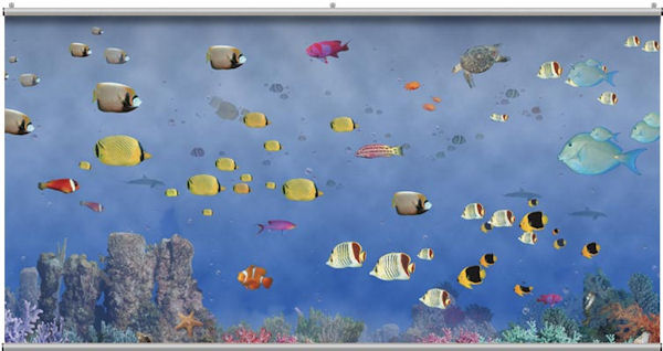 Tropical Underseas Wall Minute Mural - Wall Sticker Outlet