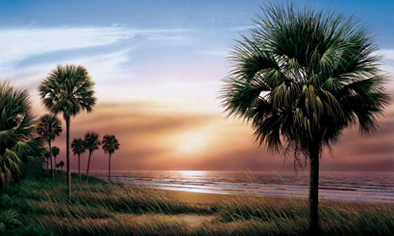 Palmetto Sunrise Mural - Kids Wall Decor Store