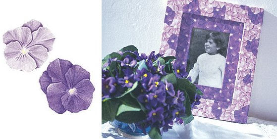 Wallies Purple Pansies Cutouts - Kids Wall Decor Store