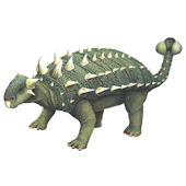 Ankylosaurus Decal Two Sizes Available