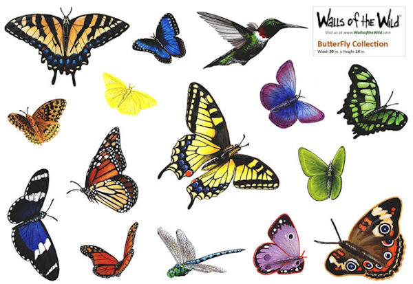 Butterfly Peel and Stick Collection - Wall Sticker Outlet